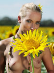 Adele B Tournesol By Tony Murano - Picture 2