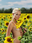 Adele B Tournesol By Tony Murano - Picture 3