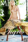 Liza B Nude in Tigris